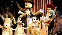 Hong Kong Disneyland sees departure of its CEO, suffers loss and lay-offs in recent months, reflecting the tough times for the city's tourism.