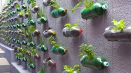 Used bottles turn artistic decoration.