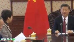 Chief Executive-elect Carrie Lam Cheng Yuet-ngor is met by President Xi Jinping in Beijing.